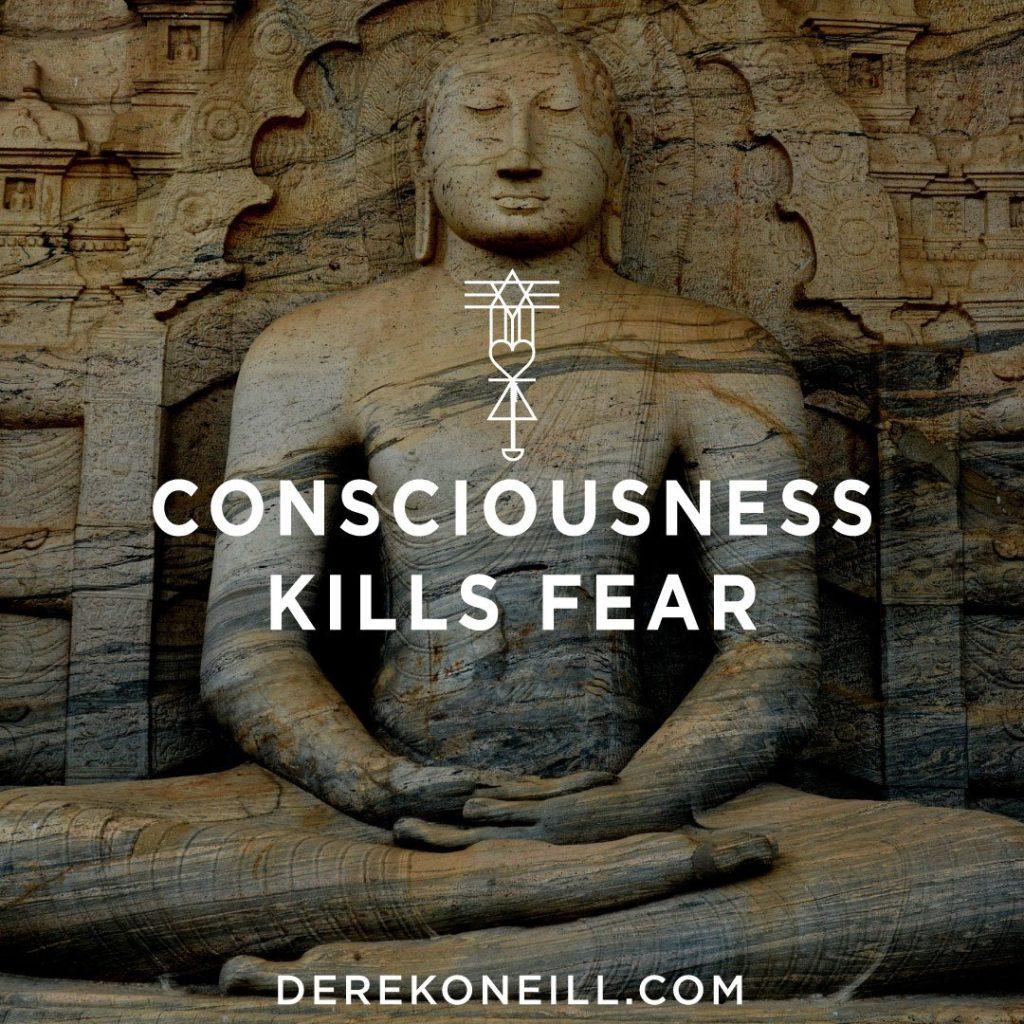 Consciousness Kills Fear